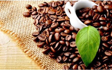 Kahve (Çiğ)